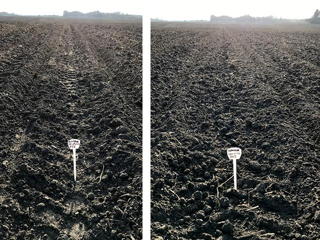 The photo on the left shows a high level of compaction demonstrated with high tire pressure (55 psi) and full weight on the transport wheels of a Fendt Momentum planter, versus about 20 psi and a balanced load with the Momentum's Load Logic system engaged (right). (Photo courtesy of AGCO Corp.)