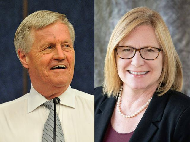 Democrats are expected to hold on to the House of Representatives next week in the election, but House Agriculture Committee Chairman Collin Peterson, a Democrat, is in a tight race against former GOP Lt. Gov. Michelle Fischbach in Minnesota's 7th Congressional District.  (DTN image from file photo and campaign photo)