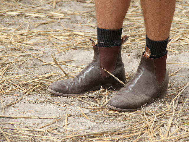 The Australian farmer connected to these J.M. Williams boots battles herbicide-resistant weeds on a daily basis. The classic elastic side riding boot, shorts and wool socks are classic attire in the farming region of Western Australia. (DTN photo by Pamela Smith)
