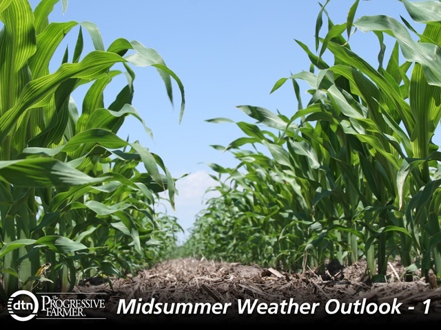 Ample soil moisture supplies and variable temperatures offer a beneficial pattern for corn development this summer. (DTN photo by Pam Smith)