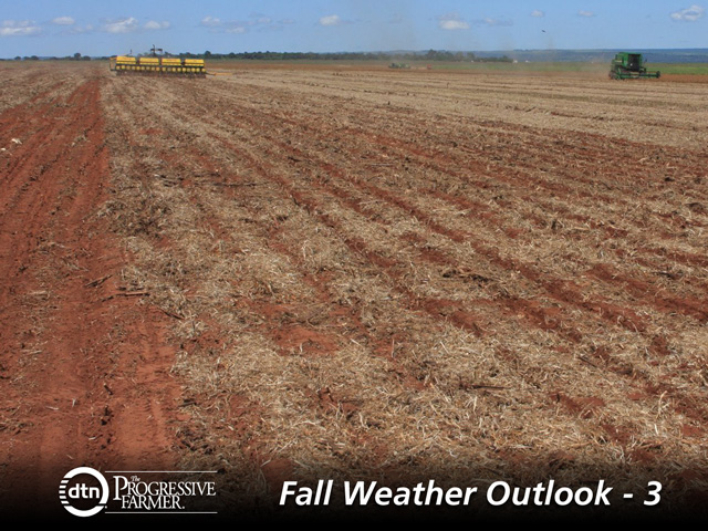 A drier-than-usual pre-planting season has minimized the early Brazil soybean planting rate. (DTN photo by Kieran Gartlan)