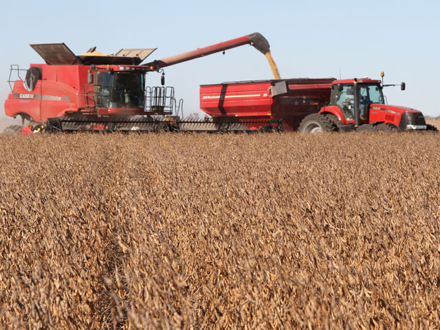 U.S. soybean farmers are fighting to save the China market for their soybeans. (DTN file photo by Pamela Smith)
