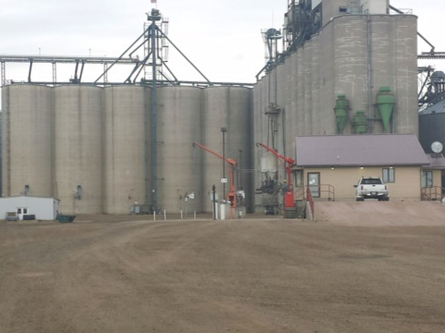 The driveway at Oahe Grain, in Onida, S.D., is empty with no railcars to load out full bins. (Photo by Tim Luken)