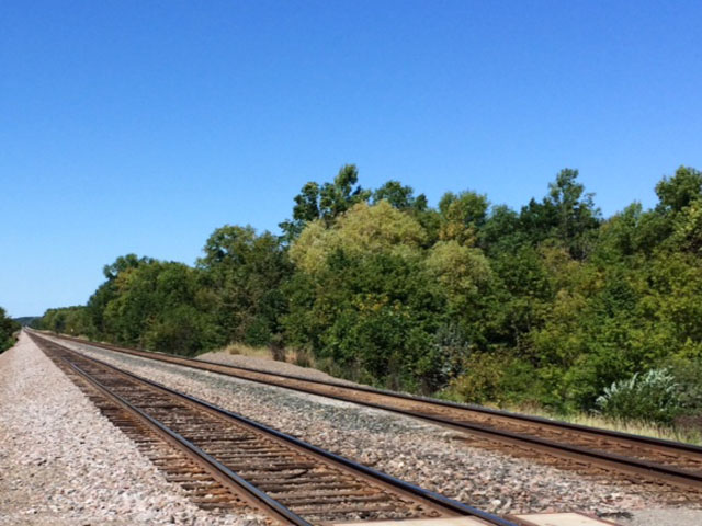 Will this be the scene this fall, or will railroads be able to handle the upcoming large corn and soybean harvest? BNSF railroad tracks along the Northern Transcon early September 2014. (DTN photo by Mary Kennedy)