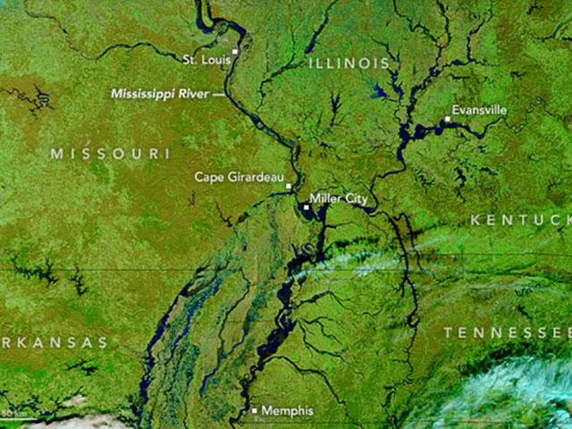 This photo taken by NASA's Terra Satellite on Jan. 4 shows the swollen Mississippi River and its tributaries. (Photo courtesy of nasa.gov)