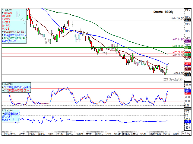 The December hard red spring wheat daily chart shows prices reaching a double-bottom contract-low last week of $5.18/bu and has since bounced higher, including a 2 3/4-cent mover higher in Monday's trade. Monday's move saw the price fall back from session highs, while the second study shows that momentum in the short-term uptrend may be stalling. The lower study shows the Dec/March spread weakening by 1 cent today to minus 14 1/2 cents, a growing sign of bearishness. (DTN graphic by Anthony Greder)