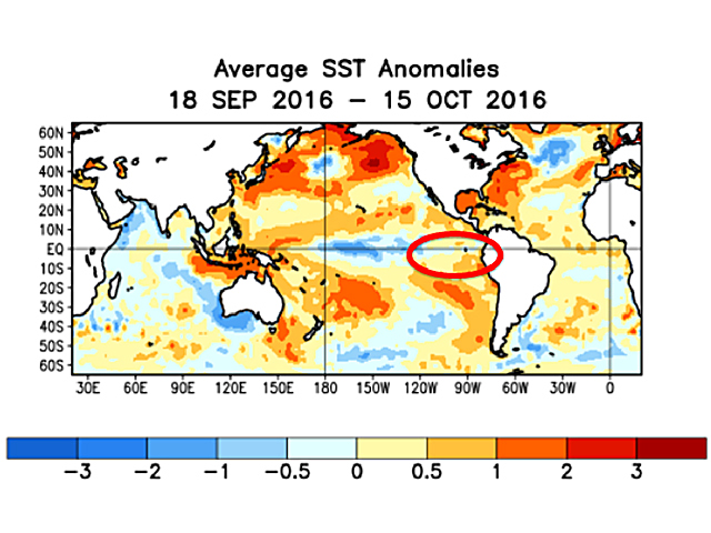 Eastern Pacific Ocean temperatures are above normal and not showing a cooling tendency toward La Nina. (NOAA graphic)