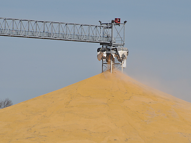 A bumper crop leads to piles of grain on the ground, but regulations limit to emergency storage to three months. (DTN file photo by Nick Scalise)