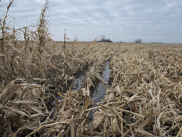 Mud, ruts and compaction could make for messy seedbeds this spring -- just one of many challenges facing farmers after a wet fall and late harvest. (DTN file photo by Susanne Stahl)
