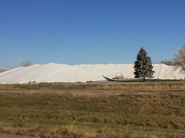 Corn piled in northwest Minnesota in mid-November 2016. Piles like this can last through the winter, especially if corn was dry and is piled on a concrete slab, then equipped with fans underneath the tarp to keep air moving. (DTN photo by Mary Kennedy)