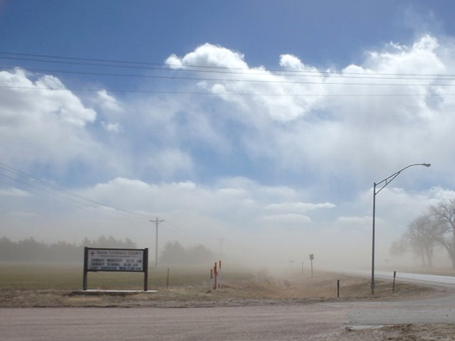 Dryness, heat and strong winds leave wheat fields camouflaged by blowing dust. (Photo courtesy of Leon Kriesel)