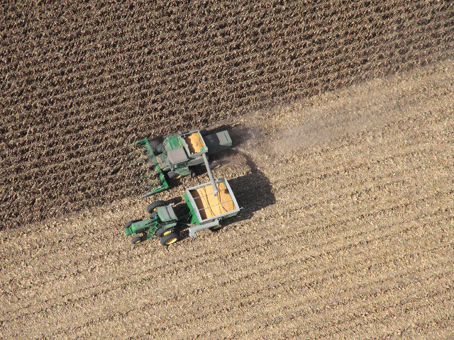 A new analysis finds crop acreage is more sensitive to crop prices than to local ethanol production. (Photo by Elaine Shein)