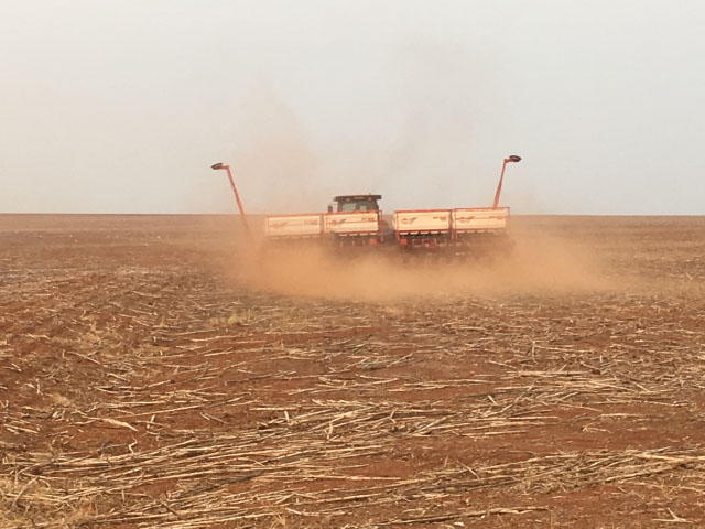 Brazilian farmers are planting soybeans on the dusty land before rain is forecast to arrive. (Photo courtesy of Ricardo Arioli Silva)