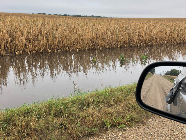 Kossuth County, Iowa, is part of the extensive Upper Midwest area that will have extensive harvest delays after heavy rain and high winds Sept. 18-20. (Photo courtesy of Tim Kohlhaas)