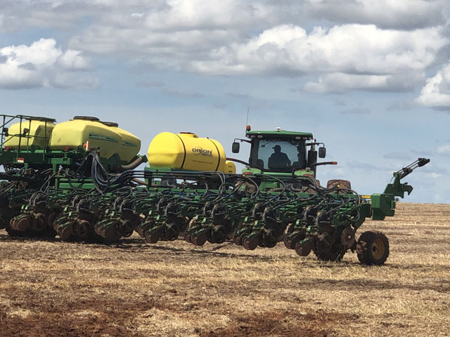 Planters at a farmer operated by Amaggi Group are planting significantly more cotton than corn this spring as Amaggi and other Mato Grosso farmers increase cotton acreage in the state.
