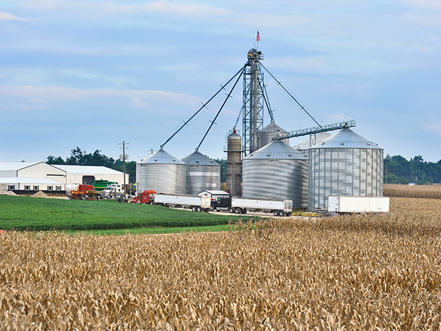 A 2016 USDA report stated that family farms -- small, large and medium -- accounted for 99% of farms and 89% of production in 2015, yet many people think big corporations own most of the U.S. farms. (DTN/Progressive Farmer file photo)
