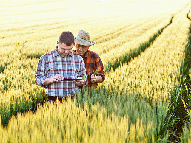 According to a recent survey by the United Soybean Board, 60% of farmers say they don't have adequate internet connectivity to perform necessary business tasks. (Getty Images photo)
