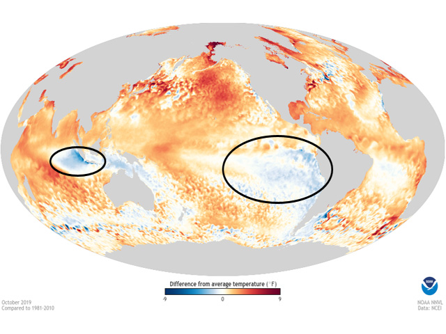 World ocean conditions in October were mostly warm. Cooler trends were noted only in the eastern Pacific Ocean and part of the Indian Ocean. (NOAA graphic)