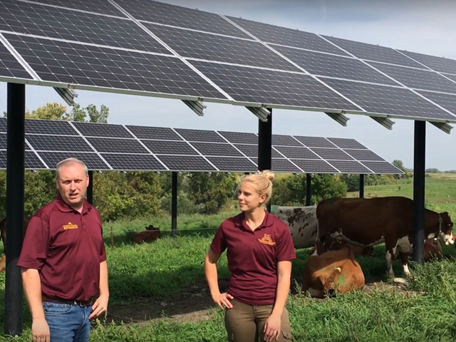 University of Minnesota Assistant Professor and Extension Organic Dairy Management Specialist Brad Heins and graduate student Kirsten Sharpe used a video to share some of the results from research regarding the benefits of solar panels on dairy farms. (Image from West Central Research and Outreach Center video)