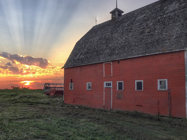 Tough times are weathered when we look for the beauty in what surrounds us. For John Kowalchuk, finding the 100-year old barn on his central Alberta farm bathed in sunlight is a sign of better days to come. (Photo courtesy of John Kowalchuk)