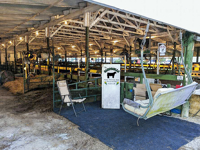 Blogger Jennifer Campbell says sitting in her porch swing at the Johnson County (Indiana) Fair was a highlight of her summer in the past. (DTN/Progressive Farmer photo by Jennifer Campbell)