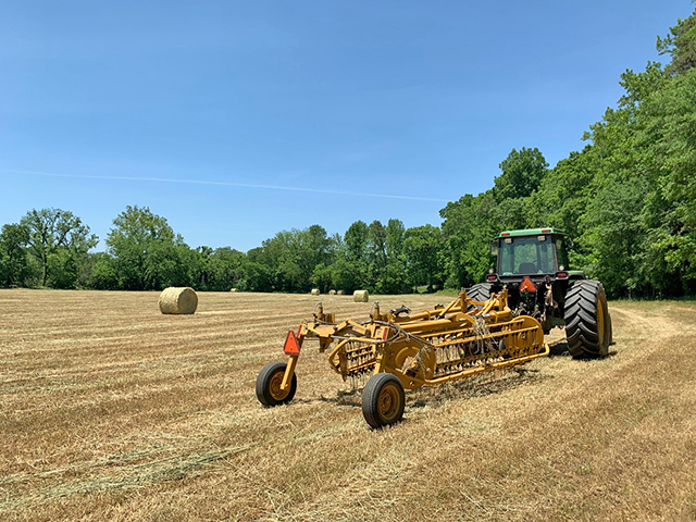 Rita the Hay Rake is the best kind of friend. (DTN/Progressive Farmer photo by Meredith Bernard)