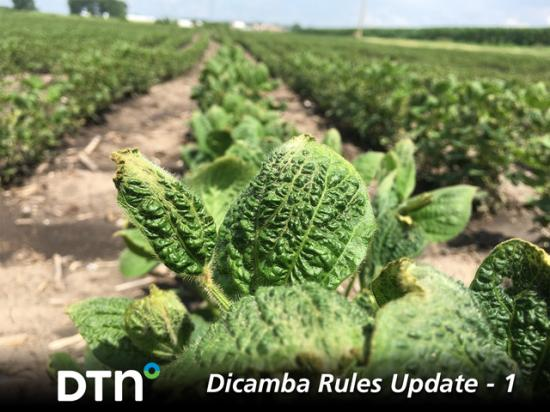Another year, another set of dicamba labels. Brush up on the new requirements for dicamba use in 2021 with this four-part DTN series, Dicamba Rules Update. (DTN photo by Pamela Smith)