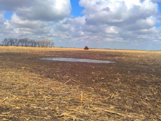South Dakota farmer Arlen Foster sued USDA this week after the agency didn't consider new evidence showing a puddle on his farm is an artificial wetland, not subject to the Clean Water Act. (Photo courtesy Pacific Legal Foundation)