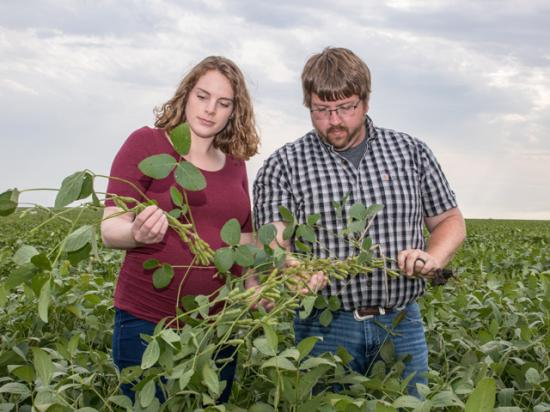 James and Paige Hepp of Rockwell City, Iowa, fulfilled their dream of raising row crops despite several obstacles, such as no family-owned land to farm. (DTN photo by Darcy Maulsby)