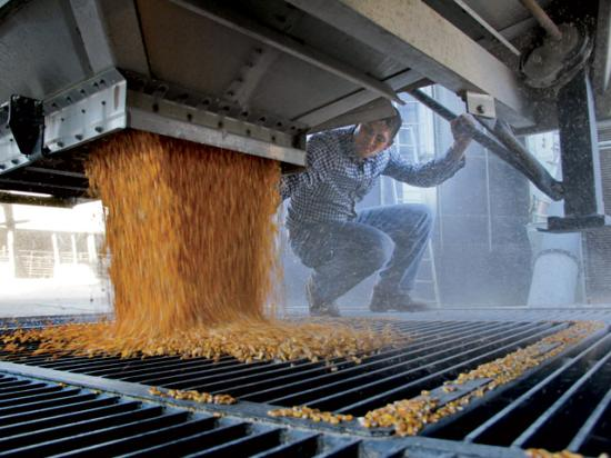 Some grain operations prefer to pay hourly wages to motivate workers during peak demands like harvest and planting. (DTN/The Progressive Farmer file photo)
