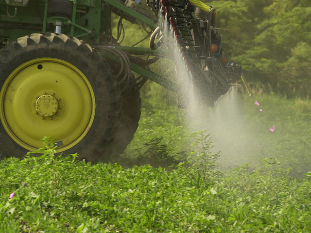 The scientist at the center of a controversy about glyphosate and human cancers says an international body's review was proper. (DTN/The Progressive Farmer photo by Jim Patrico)