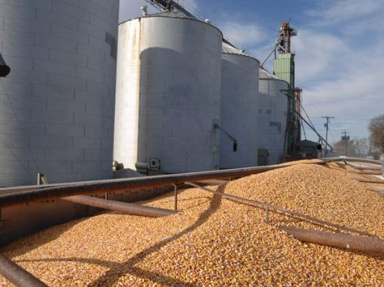 Tax analysts said the new tax law potentially could significantly skew producers' decision on which type of business entity with which to market their commodities. (DTN/The Progressive Farmer photo by Jim Patrico)