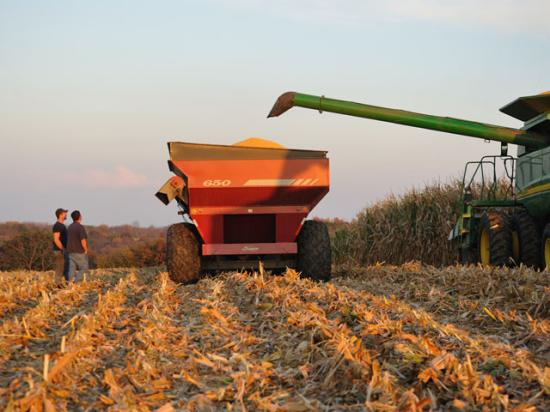 Because farming is a cyclical business, the tax code offers generous rules on loss carrybacks and amending returns for income averaging. (DTN/The Progressive Farmer file photo by Jim Patrico)