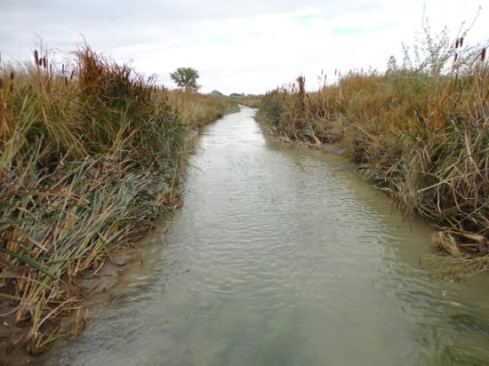 The U.S. Environmental Protection Agency wants to change the effective date of the 2015 waters of the United States rule to allow for a complete rewrite. (DTN/Progressive Farmer file photo by Jim Patrico)