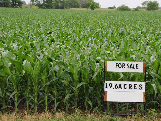 Contrarians who bought Iowa farmland at the bottom of the farm credit crisis in 1986 have earned over 1,000% returns since. (DTN/The Progressive Farmer file photo)