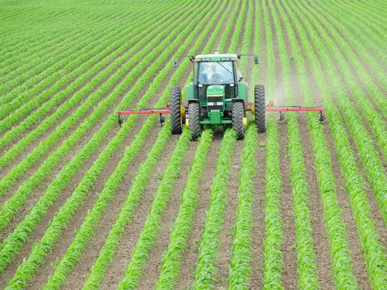 Wet fields and delayed planting continue to dampen ammonia demand. Potentially lower-planted acres for corn does not bode well for sidedress demand. (DTN file photo by Bob Ebert)