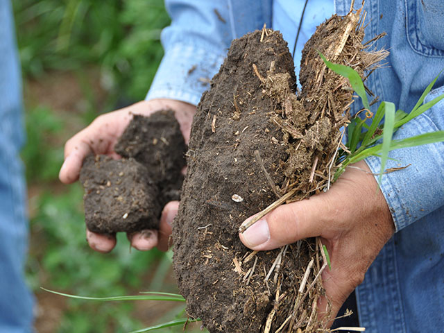 In just a few years, farmers may have access to soil tests that tell them if they have disease-fighting microbial populations and how to manage their soil to encourage them. (DTN photo by Chris Clayton)
