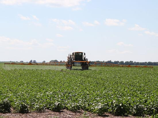 In November, the EPA registered the first dicamba-based herbicide to use with the Xtend trait. Several environmental groups asked an appeals court to find EPA violated its duties under the Federal Insecticide, Fungicide and Rodenticide Act. (DTN photo by Pam Smith)