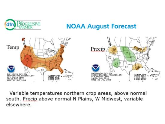 The NOAA August forecast keeps a benign to beneficial effect in place for the last full month of summer 2016. (NOAA Graphic)