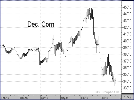 The Dec corn contract has plunged in price since RMA set spring price guarantees based on closes during the month of February. (DTN chart)