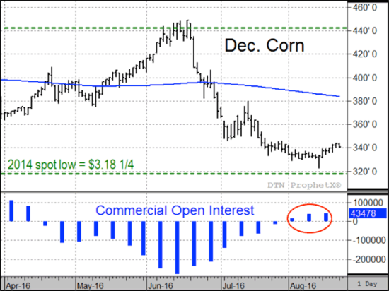 Will corn's low prices get lower? In years of bigger-than-expected harvests, Dec corn shows no strong tendency to trade either higher or lower from the end of August to the end of November (Source: DTN's Todd Hultman).