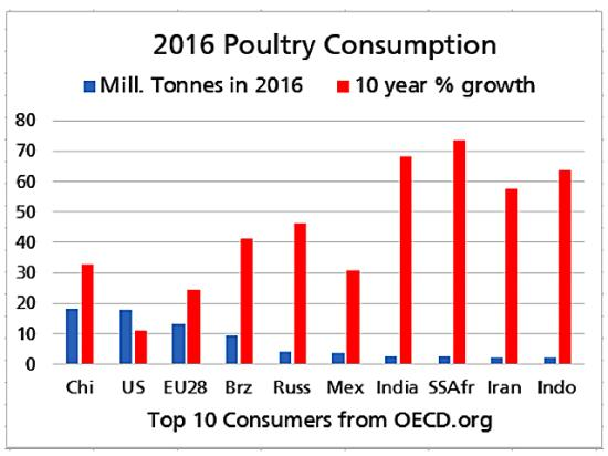 Among the top 10 consumers of poultry in the world, the chart above shows the strongest demand growth coming from Sub-Saharan Africa and India as rising living standards allow more people to enjoy this affordable protein. The ramifications are bullish for grain demand as more feed will be needed (Source: OECD Meat Consumption data).