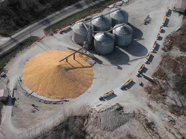Grain piles, like this one in western Iowa, were a familiar scene throughout the Midwest landscape this fall in order to store the large corn crop that most farmers were unwilling to sell. (DTN photo by Elaine Shein)
