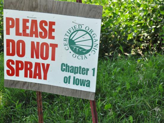 USDA has made several changes to organic programs in just the last few weeks. This sign was just outside an organic soybean field in Iowa last summer. (DTN photo by Chris Clayton)