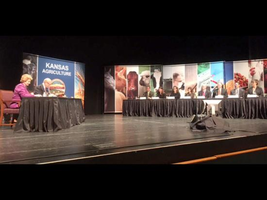 During a field hearing at Kansas State University in Manhattan, Kansas, this week, 21 Kansas witnesses make suggestions to Senate Agriculture Committee Chairman Pat Roberts, R-Kan. (second from left), and ranking member Debbie Stabenow, D-Mich. (far left), on how to make changes to the new farm bill. (DTN photo by Jerry Hagstrom)