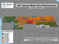 While it isn't time to push the panic button yet on late spring wheat planting, some spots on this map have last plant dates in early May and weather forecasts don't look promising for this week. (Map courtesy of INTL FCStone)