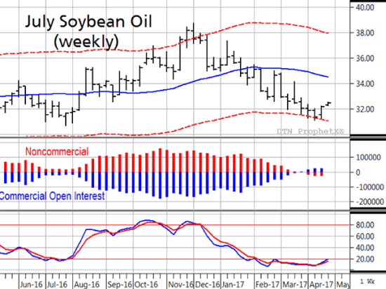 The weekly chart of July soybean oil prices above shows bullish potential for prices ahead. Commercials recently turned net long as prices got within a half-cent of their one-year lows, speculators have lost interest, and the weekly stochastic is ripe for turning higher (Source: DTN ProphetX).
