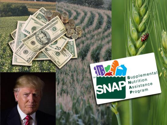 USDA would see major changes in spending for most agencies under the budget and farm bill changes proposed by the Trump administration. (DTN photo illustration)