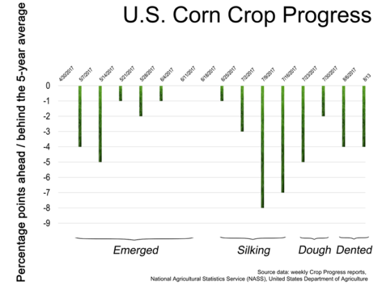 Through most of the crop's growth stages, nationwide corn Crop Progress numbers have been a few points behind the previous five-year averages. (Graphic by Elaine Kub)