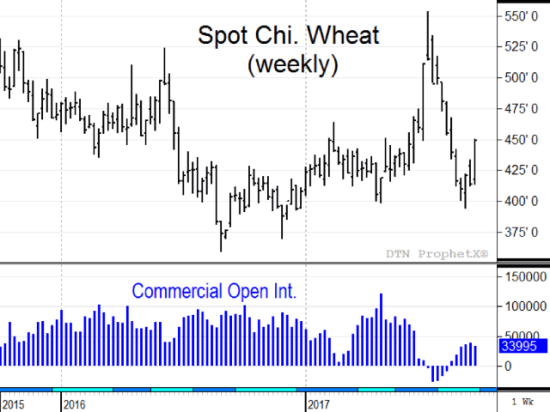 When Chicago wheat prices are cheap, it is common for commercials to be on the long side of the market. After a brief absence this summer, commercials are net long again with spot Chicago wheat prices in the low to mid $4s (Source: DTN ProphetX).